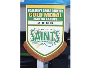 Saints Sports Sign by Angel Star Digital