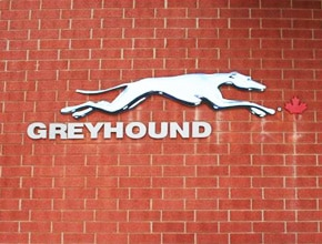 Greyhound Wall Sign by Angel Star